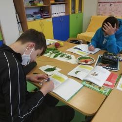 V. třída Čeština jinak